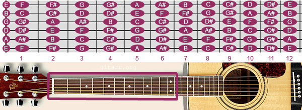EZ Fingerstyle 101 : A Product of EZ Strummer